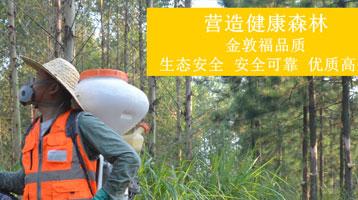 广州金敦福林业服务有限公司